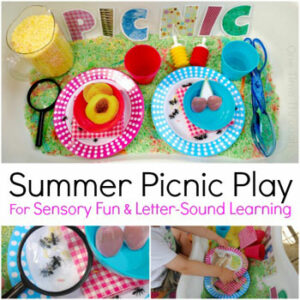 Summer Picnic Play Sensory Bins